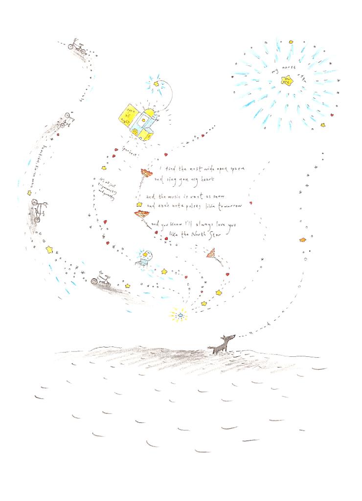 poem-likethenorthstar